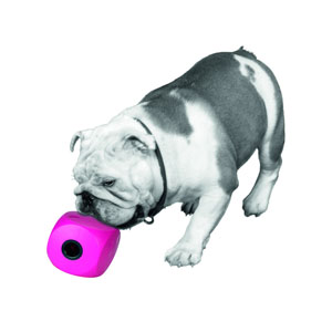 Buster Cube Snack Ball - 7 cm