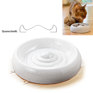 Lucky-Kitty Special Cat Bowl